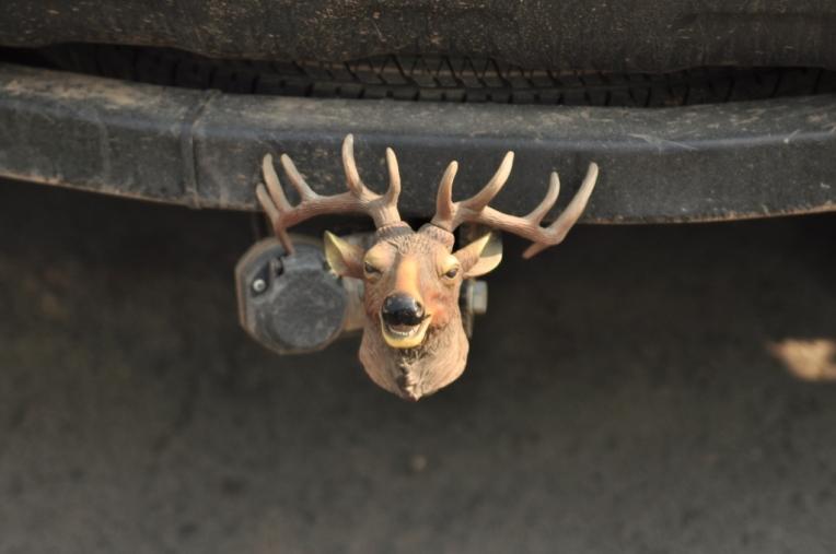 reindeer towbar