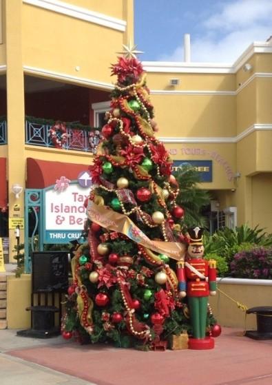 St Maarten tree 1