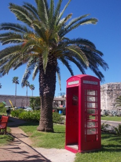 tropical telephone box