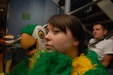 Unimpressed parrot